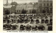 Die Russen in Czernowitz * Train auf dem Austriaplatz * Bilddokument 1914