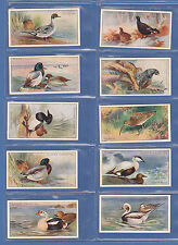 BIRDS - JOHN PLAYER - SCARCE SET OF 50 GAME BIRDS & WILD FOWL CARDS - 1927