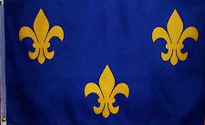 BLUE & GOLD Fleur De Lis FLAG - LOUISIANA HISTORICAL - FRENCH - MARDI GRAS