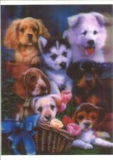 dog diverse 5D Lenticular raster Holographic Stereoscopic Picture Wall Art