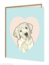 Labrador / CANE Lovers / Compleanno / cartoline d'auguri / Brainbox CANDY / Carino