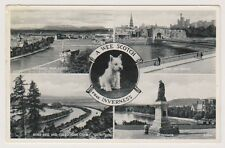 Inverness-shire postcard - A Wee Scotch Frae Inverness (Multiview) - P/U