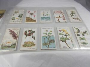 Series of 25 John Players STRUGGLE FOR EXISTENCE Cigarette Cards 1923