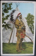DELLS OF THE WISCONSIN RIVER ~ WINNEBAGO BRAVE ~ Indian Chief