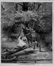 MULE, DONKEY AT WORK, 1874 ANTIQUE WOOD-CUT ENGRAVING