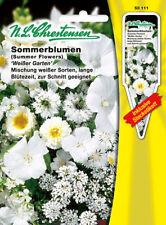 Flores de verano blanco Jardín, mezcla, semillas, Flor, chrestensen, SPS