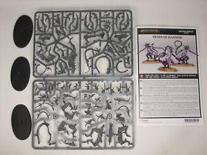 3 Fiends of Slaanesh Chaos Daemons Warhammer 40,000 40k Age of Sigmar GW