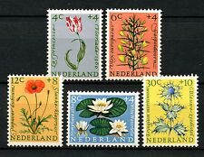 Mint Never Hinged/MNH Flowers Dutch & Colonies Stamps