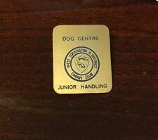 Vintage WEST TORRINGTON ENGLAND KC DOG TRAINING Club JUNIOR HANDLING PIN BADGE