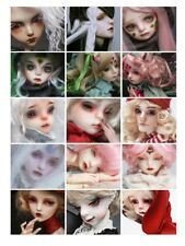 layaway plan for DollChateau BJD doll use
