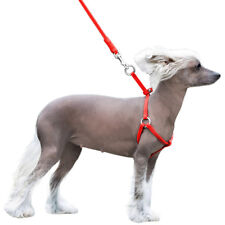 Leather Dog Harness Small Puppy Step-in Leash Set for Walking Red