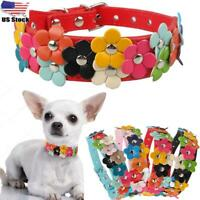 Adjustable Cat Dog Collar Pet Kitten Puppy Flower Necklace Cute for Chihuahua US
