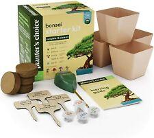 Bonsai Tree Growing Kit - Grow 4 Indoor Bonsai Trees - Plant a Garden from Seeds