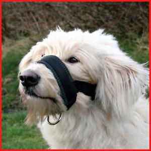 Adjustable Dog Muzzle No Anti Bite Bark Head Collar Pet Training Walk Pulling