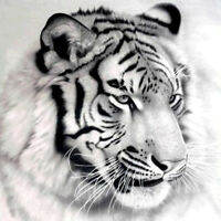 Tiger 5D Diamond Painting Diamant DIY Kreuzstich Stickerei Malerei Bild