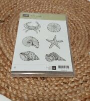 Stampin Up By the seashore  stamp set crab shell starfish