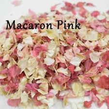 1200 + Delphinium confetti Petals biodegradable Natural Macaron pink colour mix