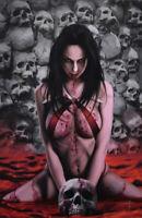 Vampirella 1 Dynamite 2019 Jay Ferguson Virgin Variant LTD 500 Skulls