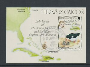 Turks & Caicos - 1985, J Audubon, Vögel Blatt - F/U - Sg MS833