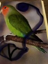 Pettorina per pappagalli
