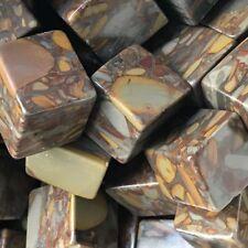 1/2lb Bulk Cube Natural Bamboo Jasper QUARTZ Crystals Tumbled  Fossil Stone