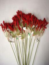 "Pack 12 New Stems 'Terracotta' Nerine Tretelia Artificial Silk Flowers Offer 28"""