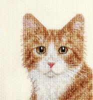 GINGER & WHITE CAT, KITTEN ~ Full counted cross stitch kit + All materials