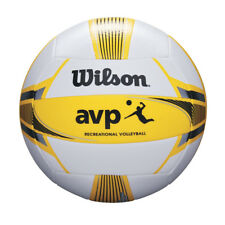 Sport Mannschaftskarte 2013 Volleyball Le Chenois Geneve
