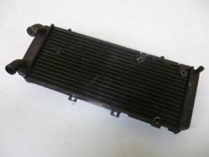 Radiador de Refrigeración origine Moto Motocicleta 45280 Segunda Mano