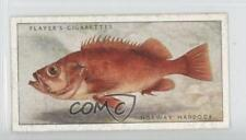 1935 Player's Sea Fishes #38 Norway Haddock Non-Sports Card 1x2