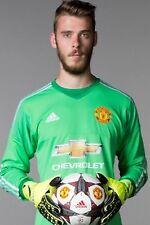 Football Photo>DAVID DE GEA Man Utd 2015-16