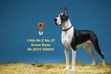 Mr.Z 1/6th The German Great Dane MRZ037 GD005 Animal Model Cloak Dog Figure Toys
