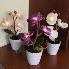 deko blumen k nstliche pflanzen mit beleuchtung f rs badezimmer g nstig kaufen ebay. Black Bedroom Furniture Sets. Home Design Ideas