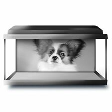 Fish Tank Background 90x45cm BW - Papillon Cute Puppy Dog Pet  #42767