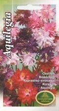 Semillas De Flores Aquilegia Para Corte De Corte Ropa de Cama Jardín pictórica Paquete Mezcla Uk