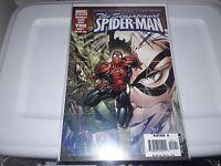 The Sensational Spider-Man (2006); 23, 24, 25; 3 issue lot/run; Black Cat