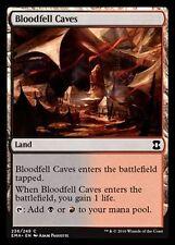 4x Caverne del Sangue Versato - Bloodfell Caves MTG MAGIC EMA English