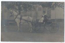 BM765 Carte Photo vintage card RPPC Animaux cheval blanc chariot correspondance