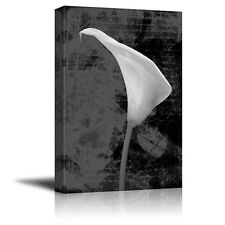 Vintage Style Calla Lily With Script in the Background - Canvas Art - 12x18