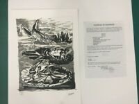 Picasso Pablo Series Buffon With Certificate Notarile Trec-Spadem MZ034