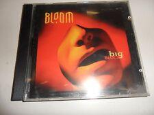 Cd  Big Block von Bloom
