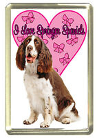 Springer Spaniel Dog Fridge Magnet, I Love Springer Spaniels