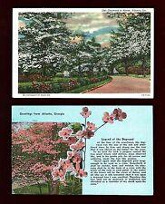 A70 Atlanta, Ga. 2 Pcs. Dogwood in Bloom & Legend, Linens