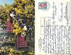 06 La Cote d'Azur - La Cueillette du Mimosa - 1961 Flamme Publicitaire