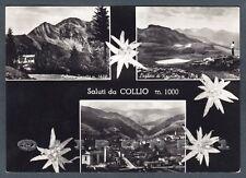BRESCIA COLLIO 08 SALUTI da... VEDUTINE - COLONIA Cartolina FOTOGRAFICA