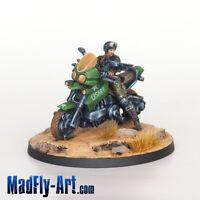 Mavericks, 9th Motorized Recon Bat. MASTERS6 Infinity painted MadFly-Art