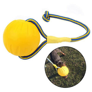1Pcs EVA Floating Pet Ball Puppy Bite Resistant Ball with Rope Pet Training Ball