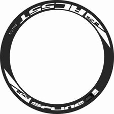 DT SWISS SPLINE RC 55T RIM DECAL SETS for two wheels
