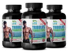 testosterone booster anti estrogen - TRIBULUS EXTRACT 1000MG 3B – tribulus