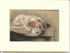 More details for 1946 lucy dawson vintage colour print sealyham terrier matted ready to frame